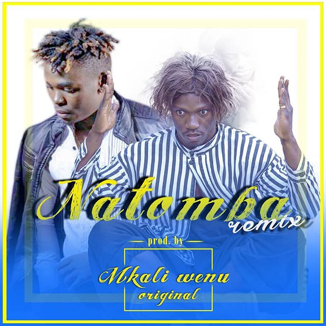 Photo of Audio | Mkali wenu – Natamba Remix | Mp3 Download