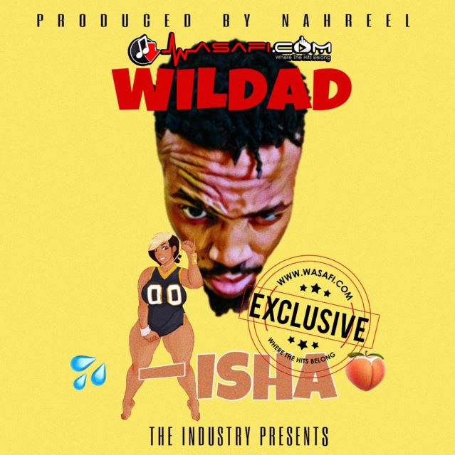 Photo of Audio | Wildad – Aisha | Mp3 Download