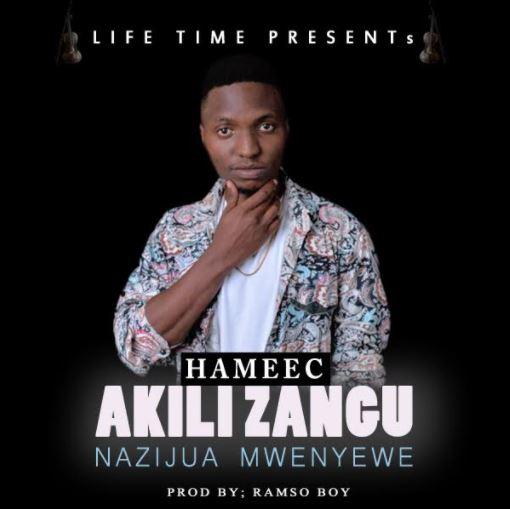 Photo of Audio | Hameec – Akili Zangu Nazijua Mwenyewe | Mp3 Download