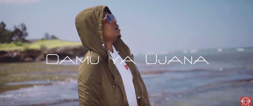 Photo of New VIDEO: Chege Ft. Maka Voice – Damu ya Ujana