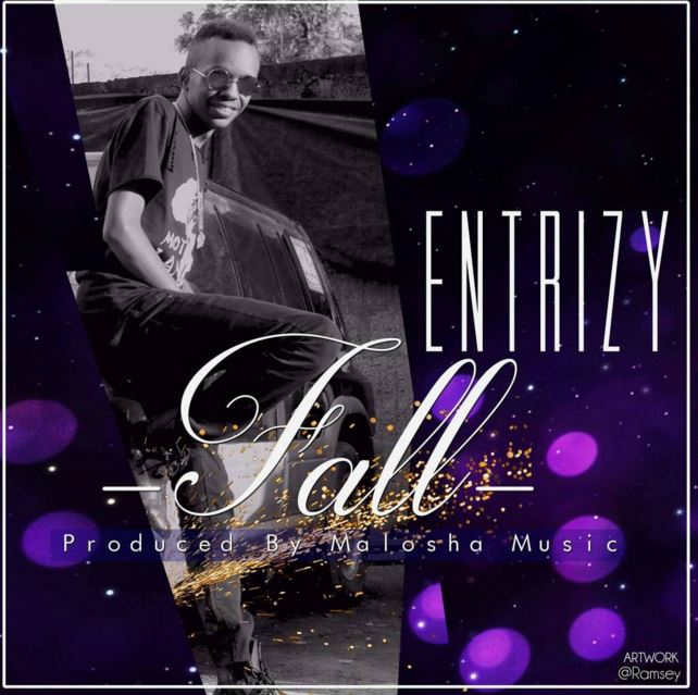 Photo of Audio | Entrizy – Davido Fall refix | Mp3 Download