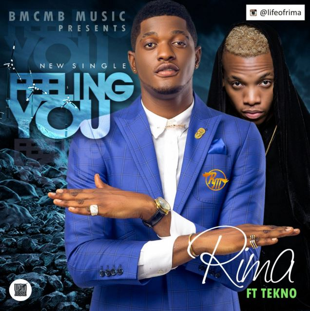 Photo of Audio | Rima Ft Tekno – Feeling You | Mp3 Download