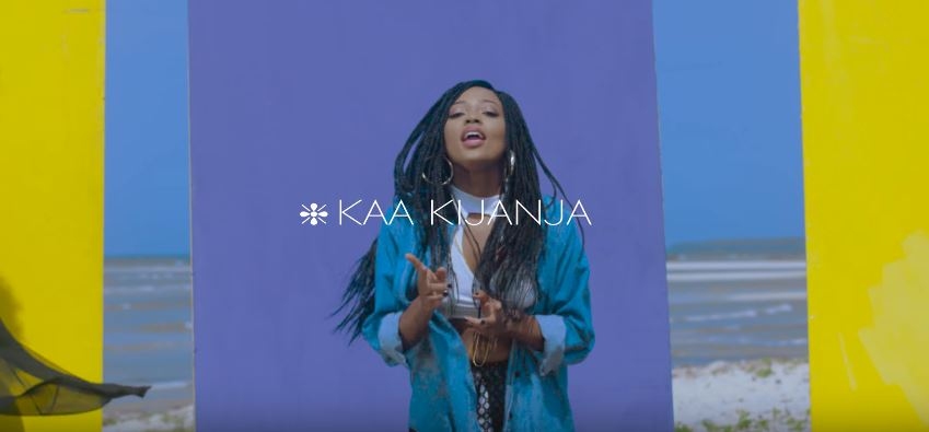 Photo of New VIDEO: Feza Kessy Ft. Nikki Wa Pili – Kaa Kijanja