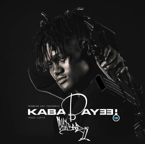 Photo of Audio | Chin Bees – Kababayee | Mp3 Download