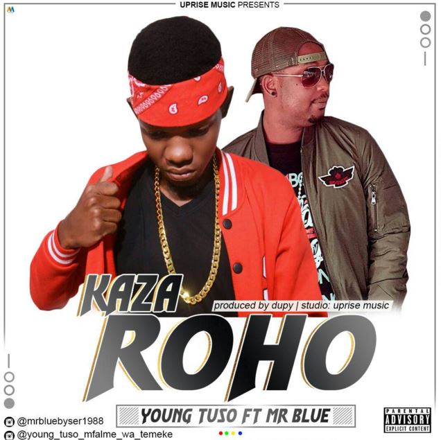 Photo of Audio | Young Tuso ft Mr blue – Kaza Roho | Mp3 Download