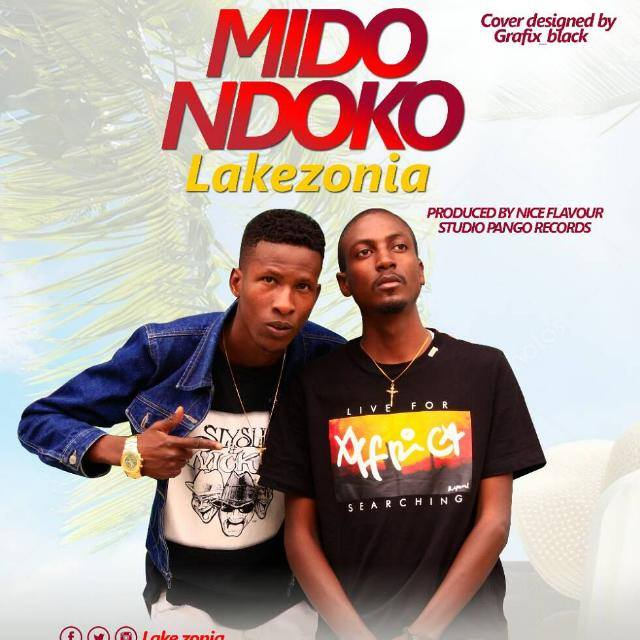 Photo of Audio | Ludo X Category (Lake Zonia) – Midondoko | Mp3 Download
