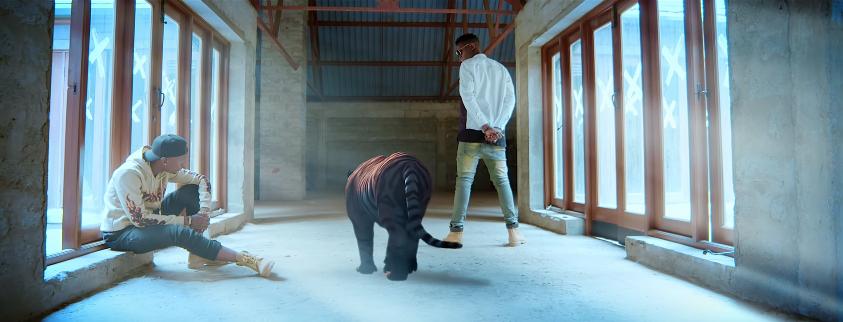 Photo of Edu Boy ft Billnass (Video) – NAIEE   Mp4 Download