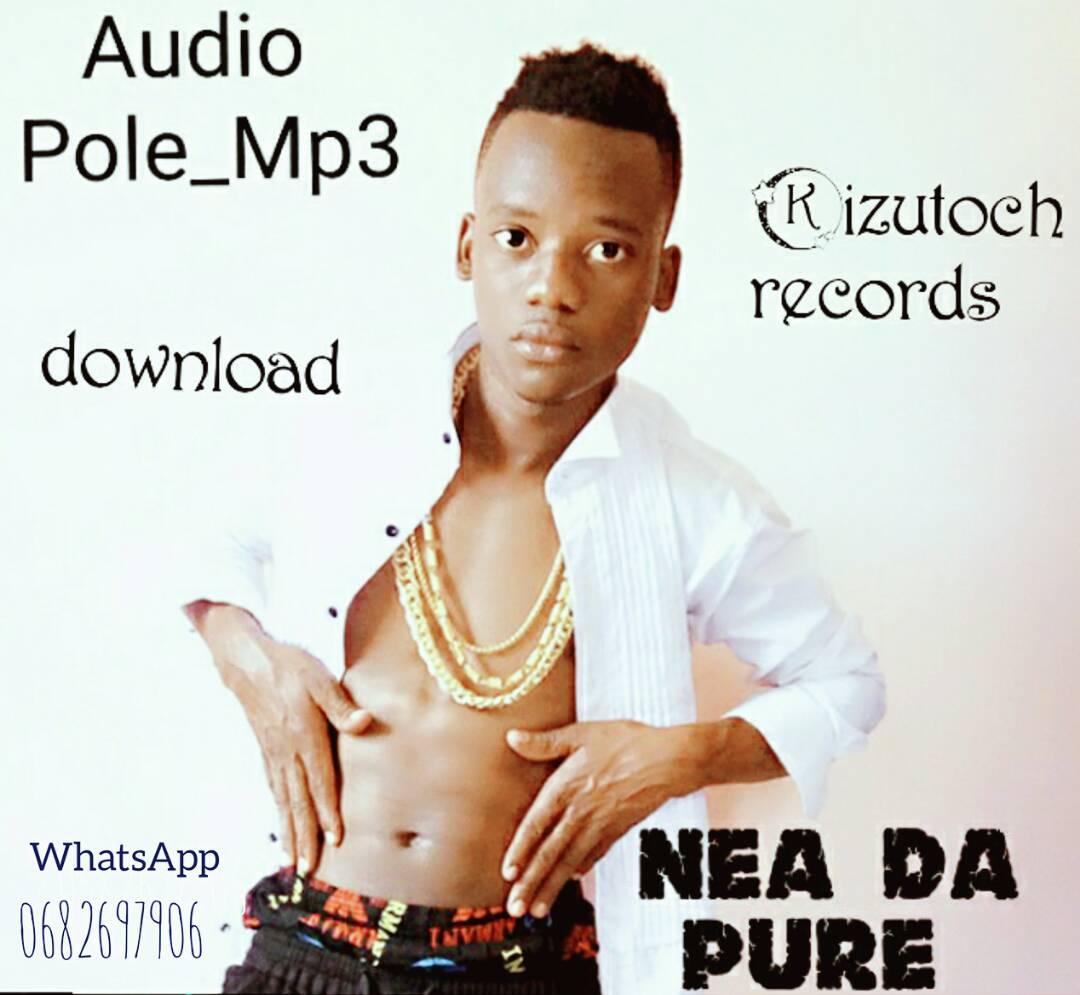 Photo of Audio | Nea Da Pure – Pole | Mp3 Download