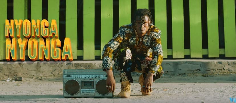 Photo of Chin Bees (Video) – Nyonga Nyonga | Mp4 Download