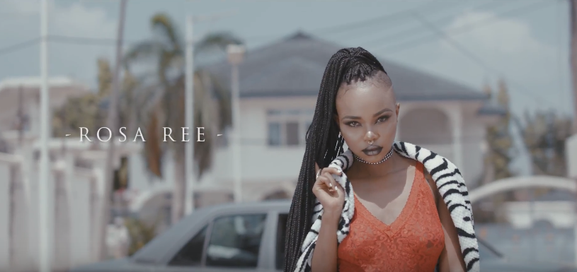 Photo of Rosa Ree (Video) – Up in the air | Mp4 Download