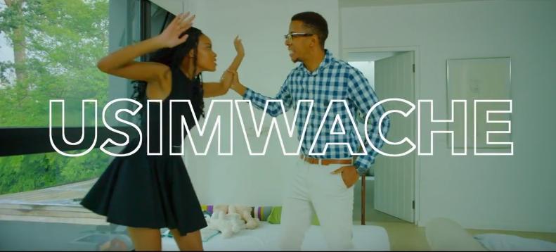 Photo of Lulu Diva (Video) – Usimwache | Mp4 Download