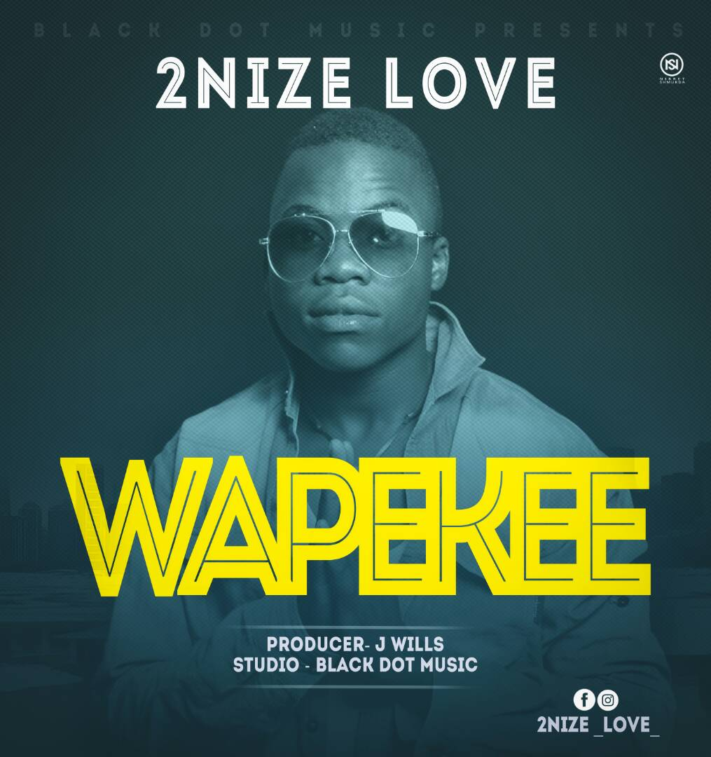 Photo of New AUDIO: 2Nize Love – Wapekee | Download