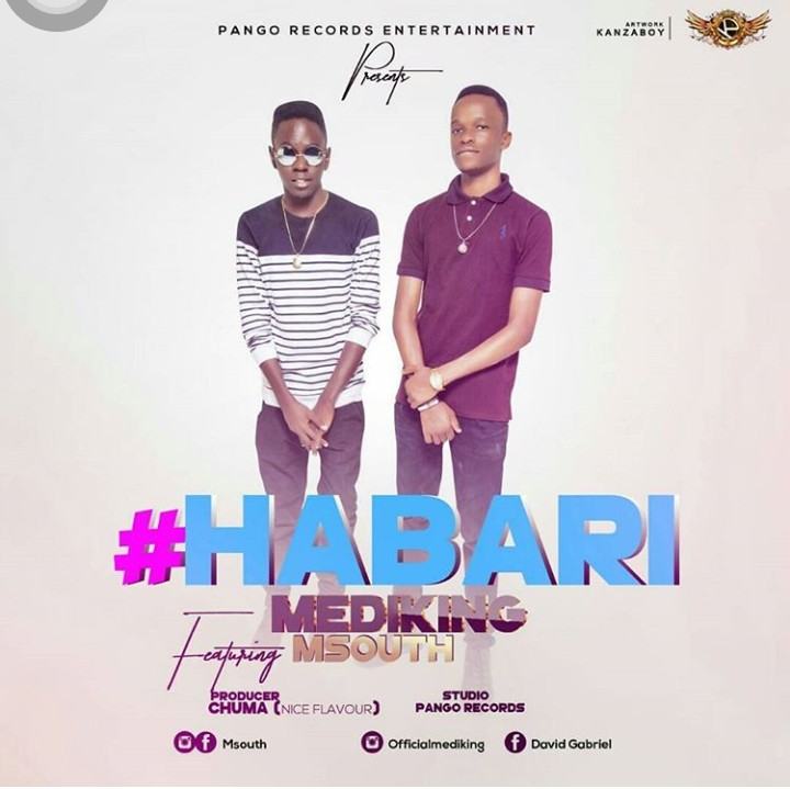 Photo of Audio | Medking Ft M South – Habari | Mp3 Download