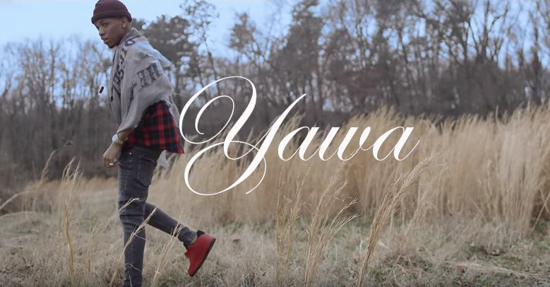 Photo of Tekno (Video) – Yawa | Mp4 Download