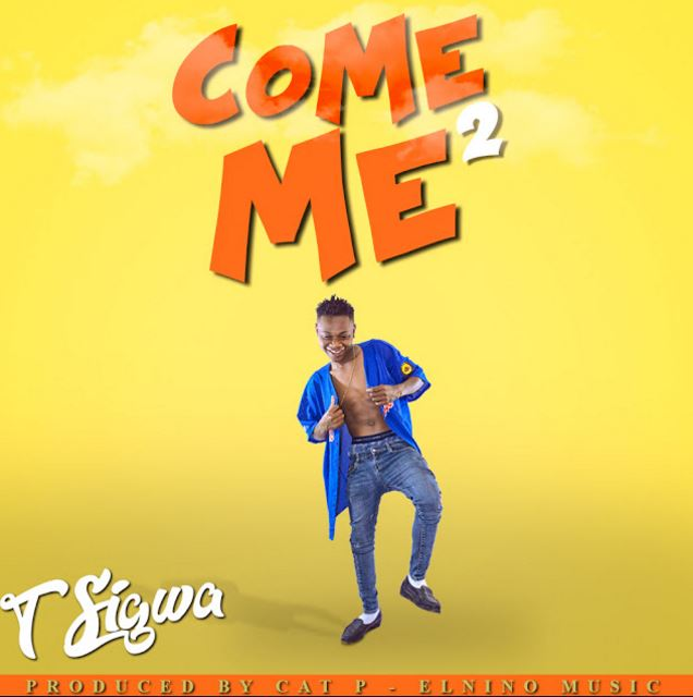 Photo of Audio | T Sigwa – Come 2 Me | Mp3 Download