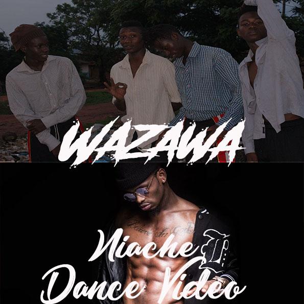 Photo of Dance VIDEO: Diamond Platnumz – Niache