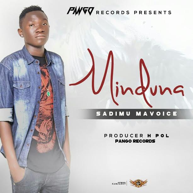 Photo of Audio | Sadimu Mavoice – Minduna | Mp3 Download