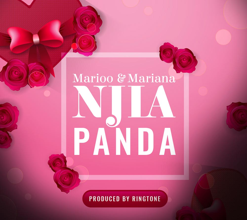 Photo of Audio | Marioo Ft. Mariana – Njia Panda | Mp3 Download