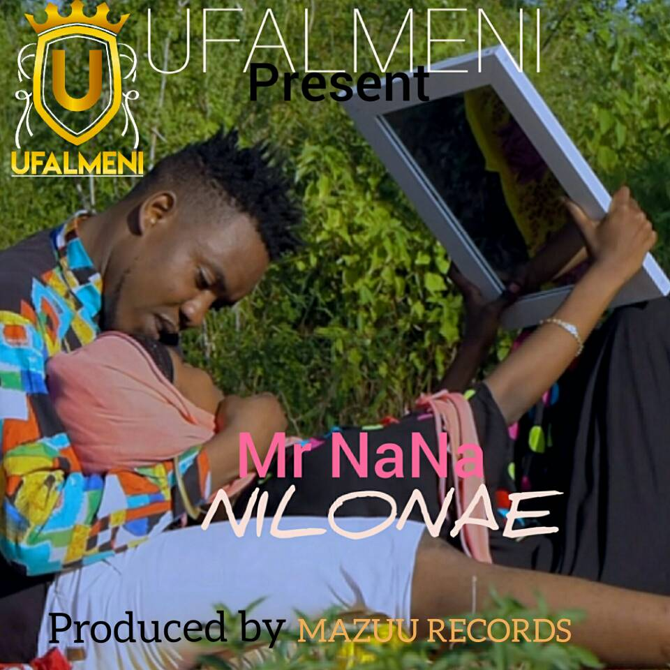 Photo of New VIDEO & AUDIO : Mr Nana – Nilonae | Download