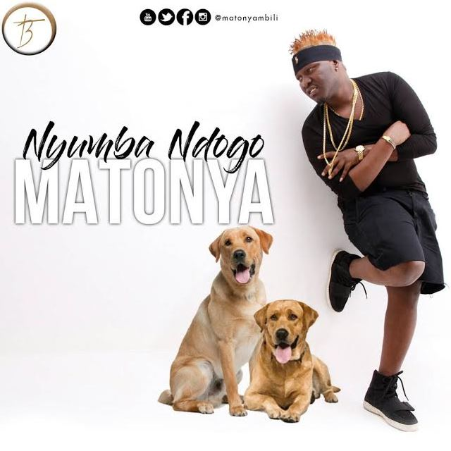 Photo of Audio | Matonya – Nyumba Ndogo | Mp3 Download