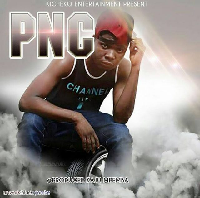 Photo of Audio | PNC – Ananuna Nuna ( Singeli ) | Mp3 Download