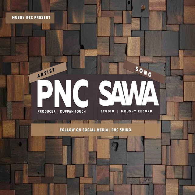 Photo of Audio | PNC – Sawa | Mp3 Download