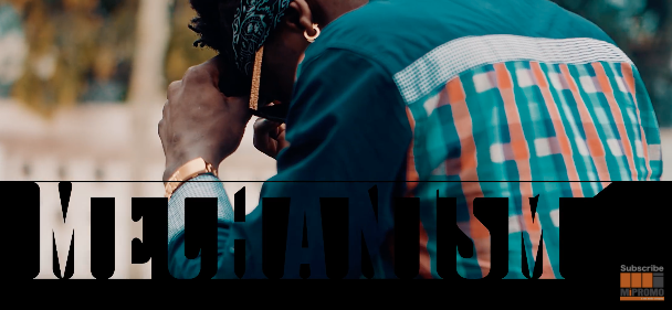 Photo of Shatta Wale (Video) – Mechanism | Mp4 Download