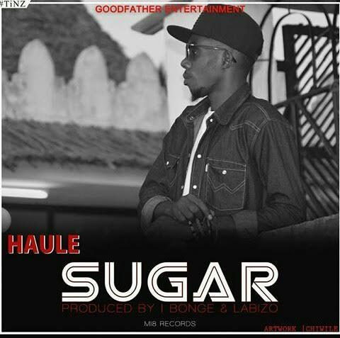 Photo of Audio | Haule – Sugar | Mp3 Download