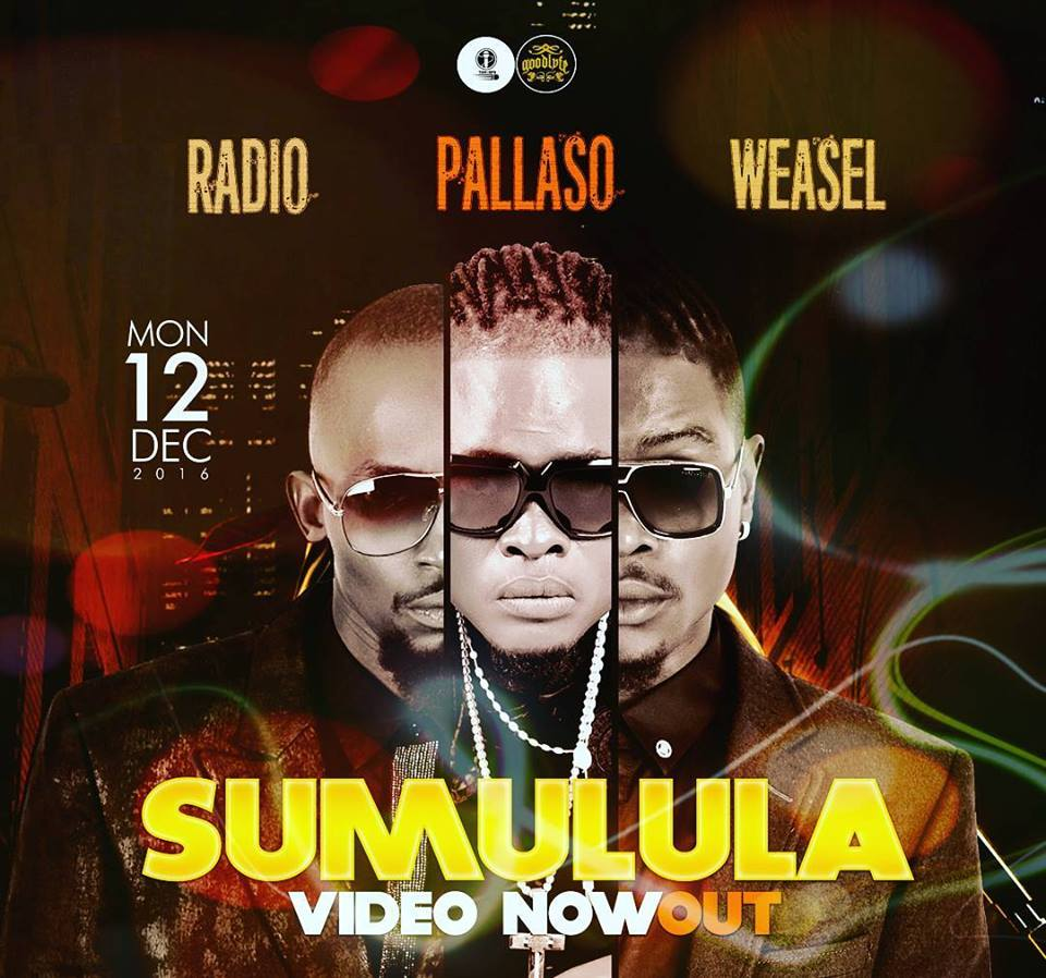Photo of Pallaso Ft. Radio & Weasel (Video) – Sumulula | Mp4 Download