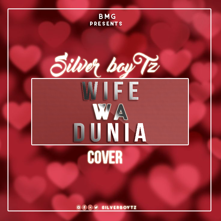 Photo of Audio | Alikiba – Wife Wa Dunia (Cover by Silver Boy ) | Mp3 Download