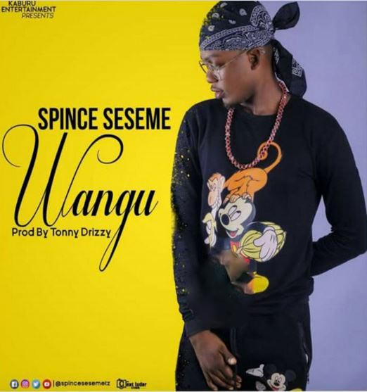Photo of Audio | Spince seseme – WANGU | Mp3 Download