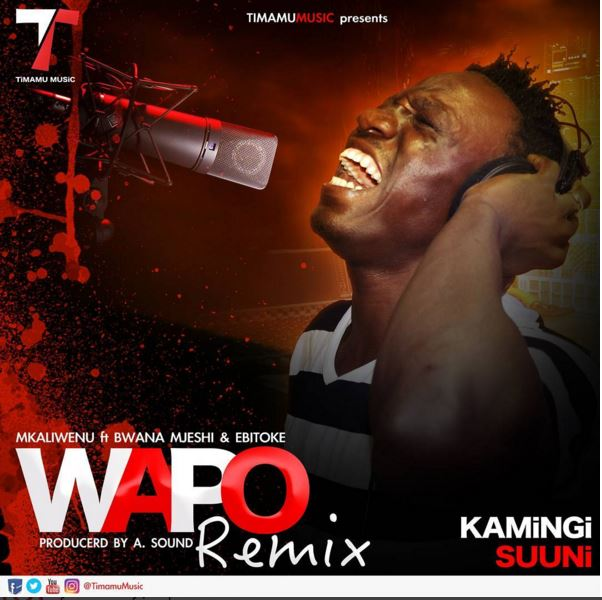 Photo of Audio | Mkaliwenu ft Bwana Mjeshi & Ebitoke – Wapo REMIX | Mp3 Download