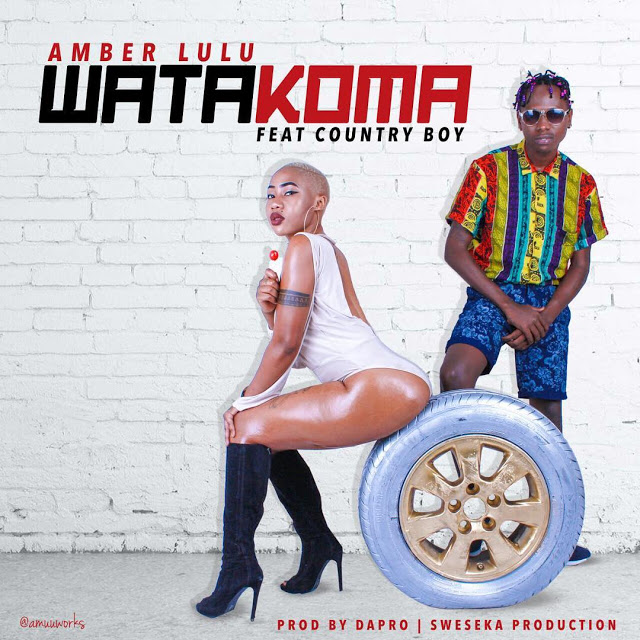Photo of Audio | Amber Lulu ft. Country boy – Watakoma | Mp3 Download