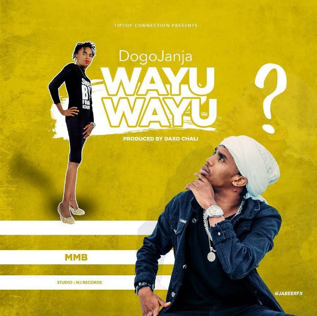 Photo of New AUDIO | Dogo Janja – Wayu Wayu | Download
