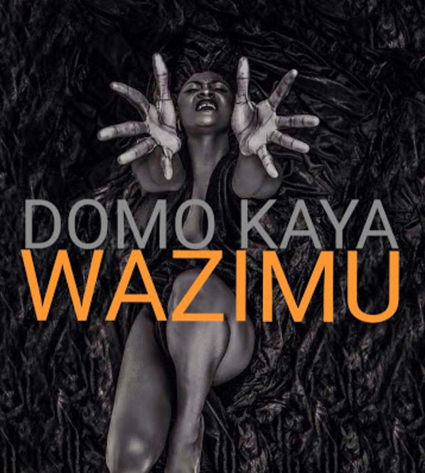 Photo of New AUDIO: Domo Kaya – Wazimu | Download