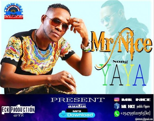 Photo of Audio | Mr Nice – Yaya | Mp3 Download