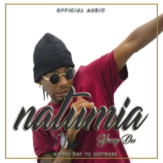 Photo of Audio | Young Dee – Natumia | Mp3 Download