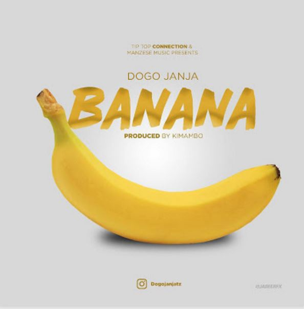 Photo of New AUDIO | Dogo janja – Banana | Download
