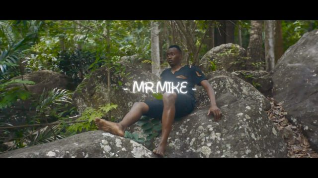 Photo of New VIDEO: Mr Mike – Milele