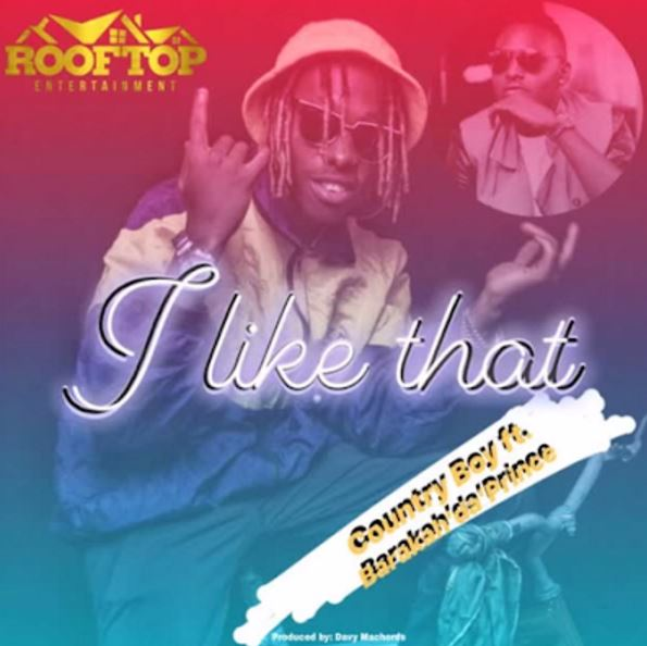 Photo of New AUDIO: Country Boy ft Barakah Da Prince – I Like That | Download
