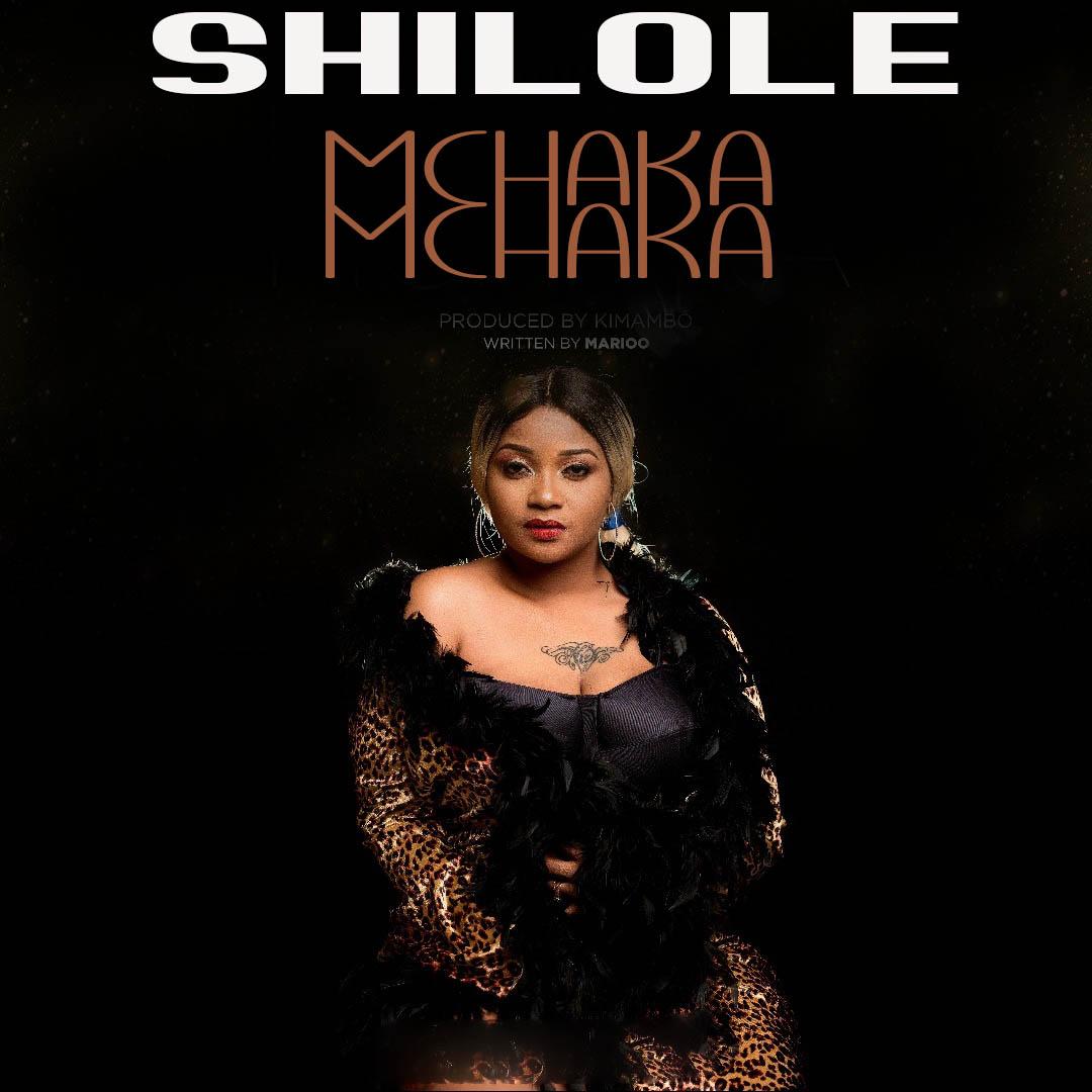 Photo of New AUDIO: Shilole – Mchaka Mchaka | Download