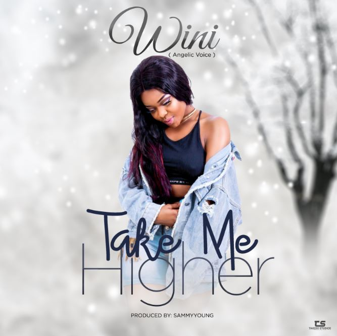 Photo of New AUDIO: Wini – Take Me Higher | Download