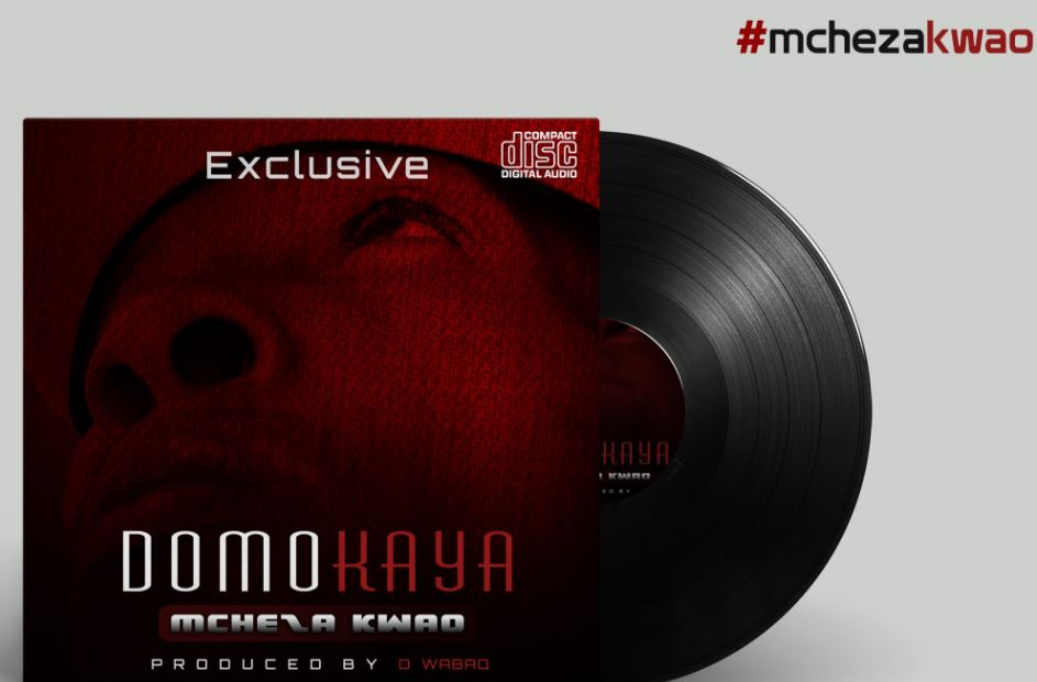 Photo of New AUDIO: Domokaya – BOMBA | Download