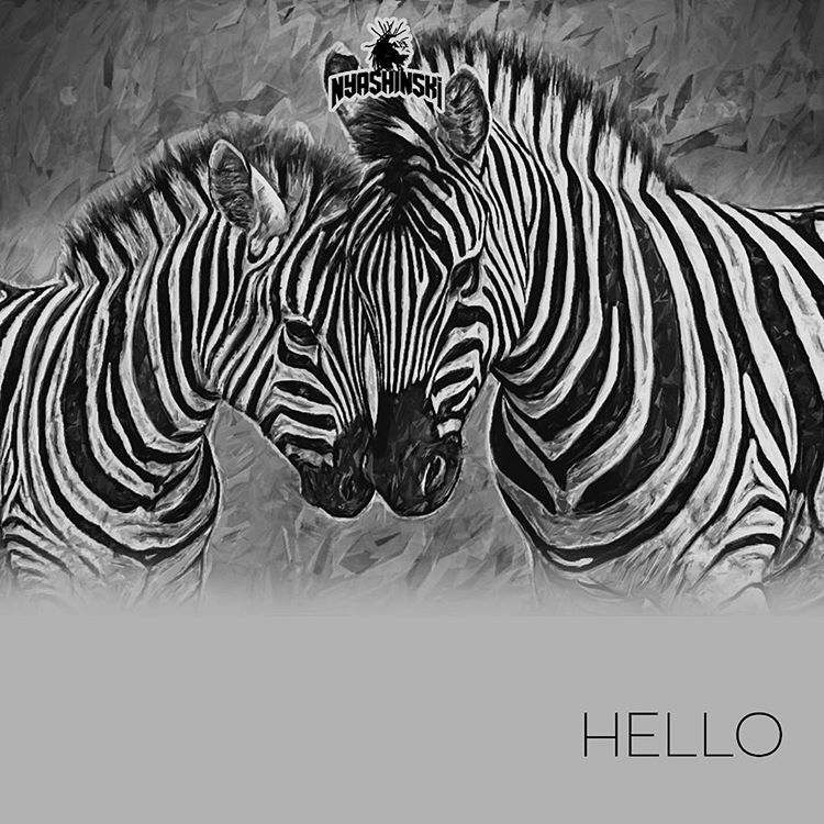 Photo of New AUDIO: Nyashinski – Hello | Download