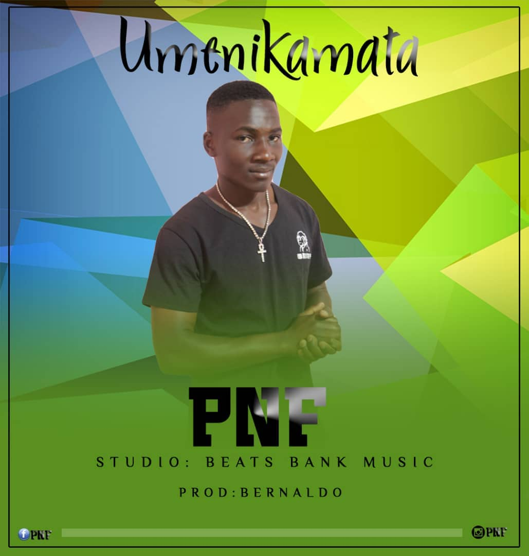 Photo of New AUDIO: PNF – Umenikamata | Download