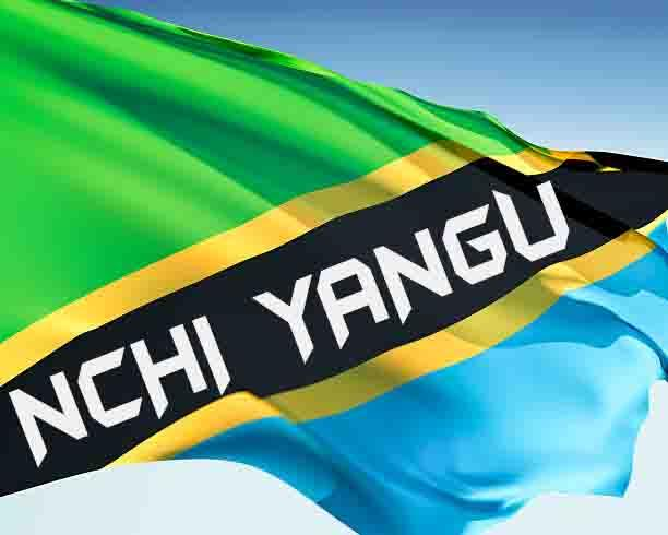 Photo of New AUDIO: Tanzania Artist's – Nchi Yangu | Download
