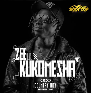 Photo of New AUDIO: Country Boy – Zee La Kukomesha | Download