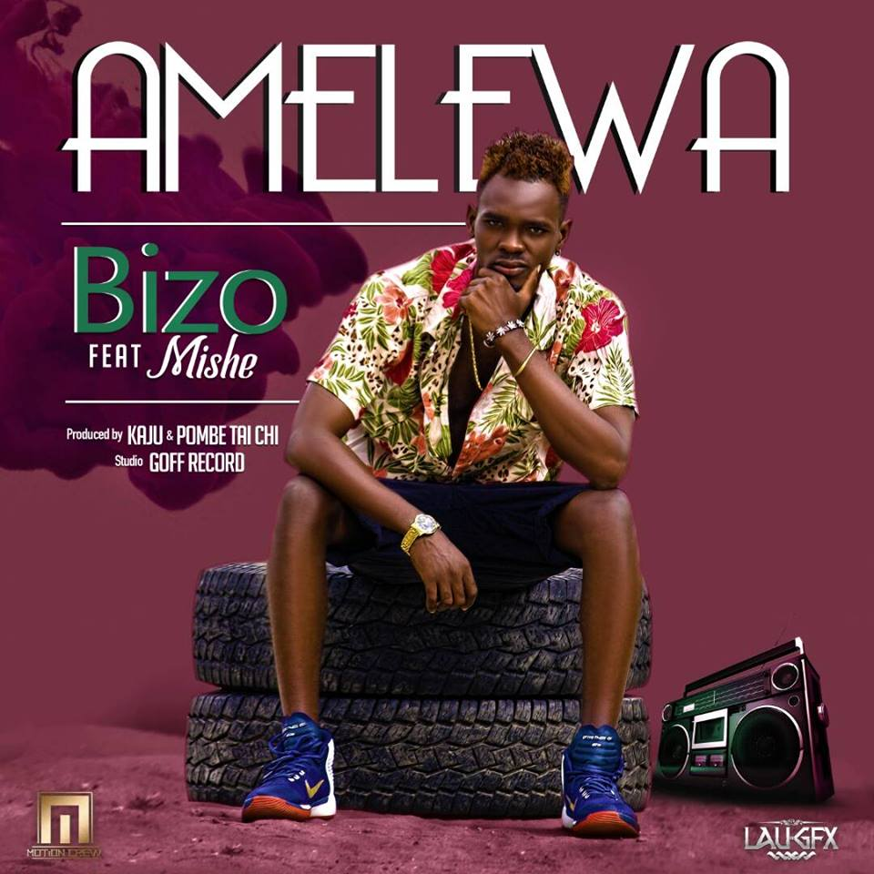 Photo of New VIDEO: Bizo Man ft. Toto Boy – Amelewa