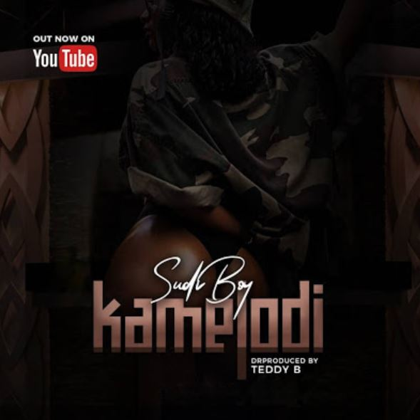 Photo of New AUDIO: Sudi Boy – Kamelodi | Download