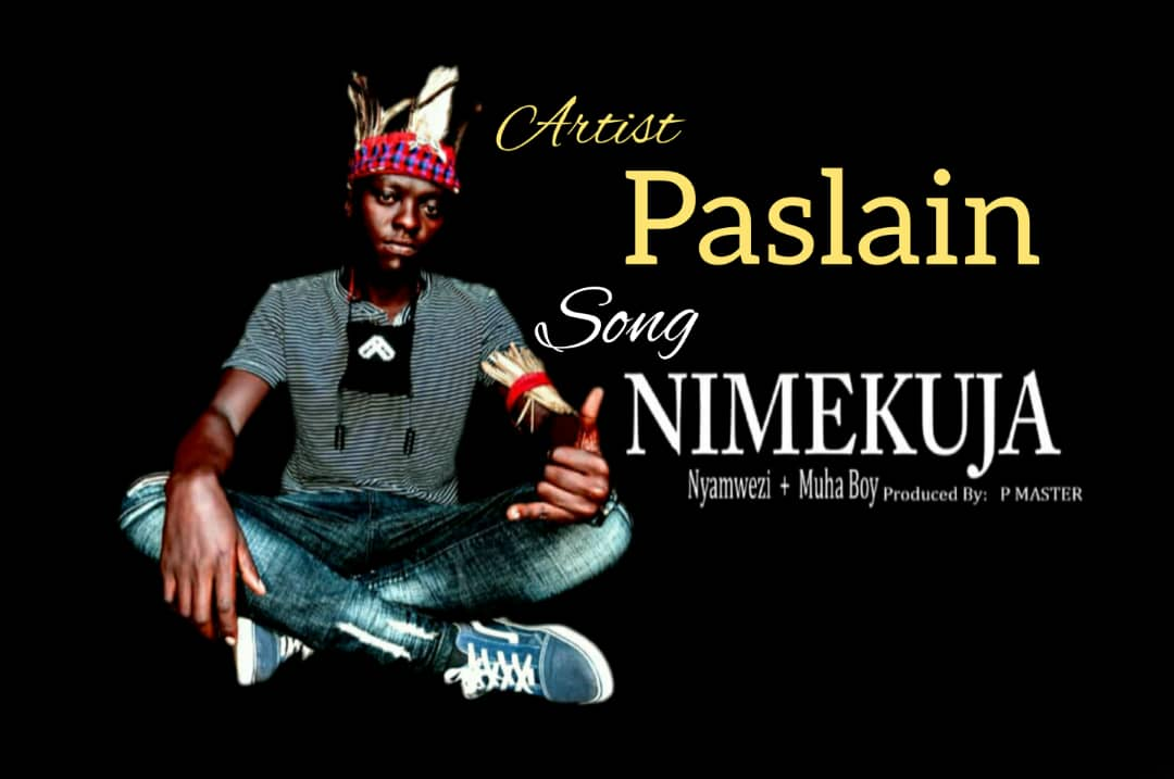 Photo of New AUDIO: Paslain – Nimekuja | Download